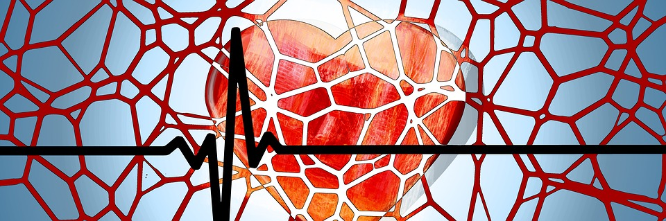 heart-1222517_960_720