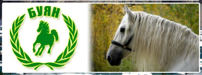 «Буян» Конные походы